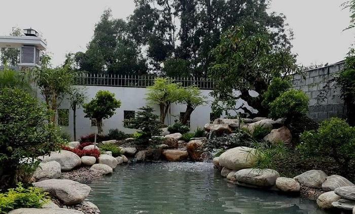 hồ cá trước nhà
