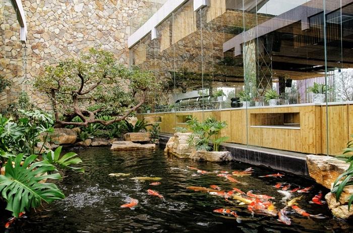 hồ cá sân vườn theo phong thuỷ