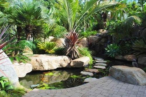 mẫu tiểu cảnh thác nước đẹp